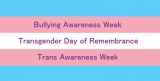 Bullying and Trans Awareness Week, TDOR and how schools can help